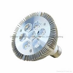 10W PAR30 LED投射灯_LED灯泡