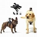 gopro fetch Dog Harness mount china