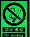 北京夜光涂料夜光漆自发光涂料 2