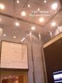 Metal bead chain curtain screen