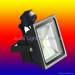 30w 50w 60w 70w 80w 100w led floodlight,led projector,led flood lamp
