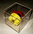 acrylic display case/box,acrylic display