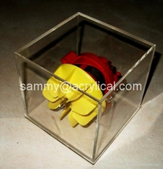 acrylic display case/box