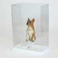 acrylic display case,acrylic display box