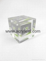 Acrylic embedmnet,Corporation Souvenir Gifts