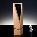 木製獎| 獎杯設計,木製紀念杯