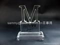 Acrylic Paperweight, Acrylic Award, Acrylic Trophy  2