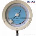 Precision Pressure Gauge ( Dia: 250mm )