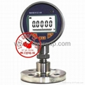 Digital Pressure Gauge ( NEW 2015 )
