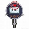 Battery Supply Digital Pressure Gauge