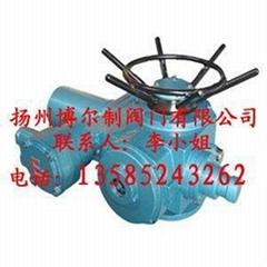 ZB電動頭裝置(揚州博爾一體式電動閥)
