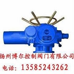 DZZ整體一體化電動裝置(整體型閥門電動執行器)
