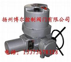 DQT整體調節型電動頭(整體一體化閥門電動執行器)