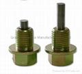 Magnetic Steel oil screw