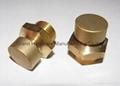 Brass Vent plugs  5