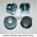 hydraulic hex socket plugs