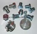 hydraulic blanking plug