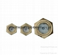 """Brass G1-1/2"""" Circular window sight glass with white planting 6"""