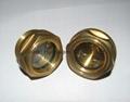 """BSP 1"""" Brass Oil sight glass"""