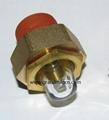 brass domed oil sight window