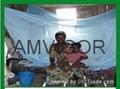 Polyethylene  Mosquito Nets
