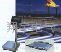 防爆電子秤 防爆傳感器 防爆儀表