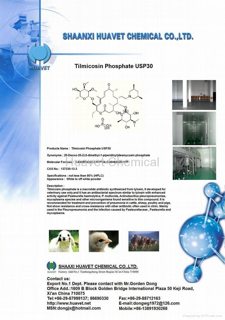 Tilmicosin Phosphate (CAS No.:137330-13-3)  1