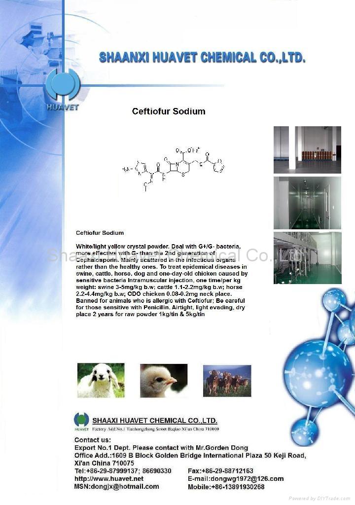 Ceftiofur Sodium (CAS No.:104010-37-9 ) 1