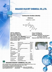 Cefotaxime Sodium Sterile Powder (Injectable Grade)