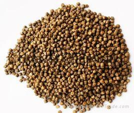 Norfloxacin Lactate (5%,10%,30%) Soluble Powder/Granular