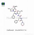 Carfilzomib (Cas:868540-17-4)