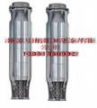 304/316SS  plad pumps不鏽鋼深井泵 3