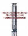 pladpumps富蘭克林電機驅動深井泵 1