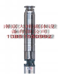 pladpumps富蘭克林電機驅動深井泵
