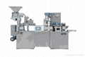 DPP250D AL/PL Blister Packing Machine