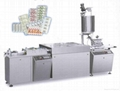 BXD-280 Multi-function Pillow Type Packing Machine 5