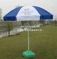 太陽傘 2
