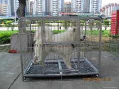 Side tube petdog cage