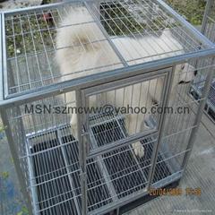 Cages wholesale