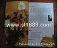 国花牡丹(丝绢版) 5