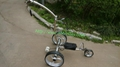 Remote control Electric Stainless steel Golf Trolley of double quite motors 9