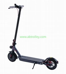 Light weight 250W 4.0Ah cheap stable electric scooter NEWEST scooter