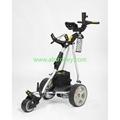P1 digital sports electric golf