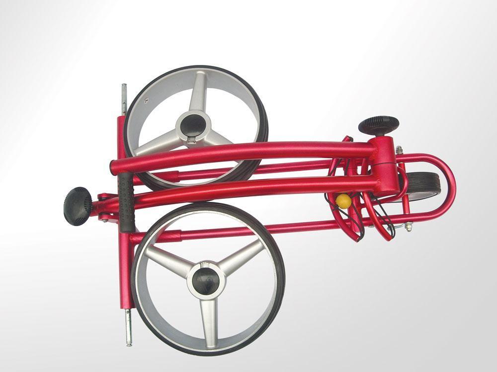 X3P Beauty push golf buggy 1
