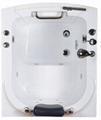 Walk in bathtub T-110