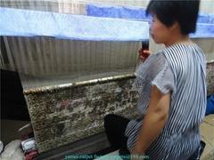 手工挂毯 天然蠶絲波斯地毯 20X14 FT 亞美地毯
