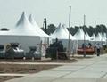 供應彎柱篷房 倉儲篷房 派對帳篷 尖頂篷房 2