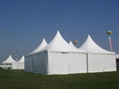 Supply curved column tent party tent pointed roof tent 3x3m