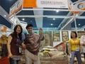 特好地毯及艺术挂毯只在中国河南亚美地毯厂 2