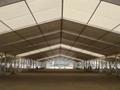 专业生产大型展览篷房,交易会篷房 4